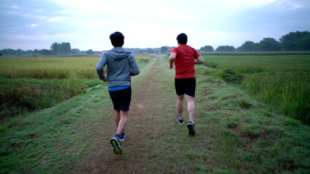 slo mo ts two friends running in field to training for marathon - male friendship stock videos and b-roll footage