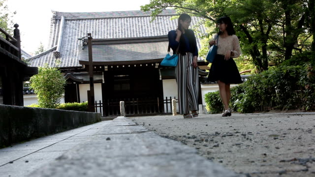 公園で散歩する 2 人の友人 - ローアングル点の映像素材/bロール