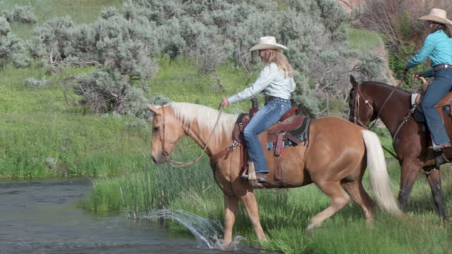 Two girlfriends ride their horses over a stream