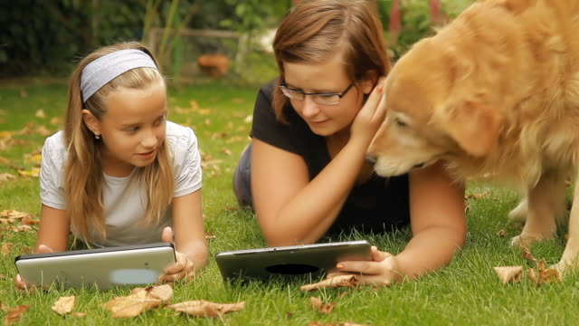 hd dolly: two girls and dog on the backyard - retriever stock videos and b-roll footage