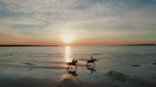 Two GIrls are Riding Horses on a Beach. Horses Run Towards the Sea. Beatiful Sunset is Seen in this Aerial Shot.