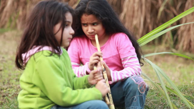 two girls eating sugarcane in the farms  - chewing stock videos & royalty-free footage