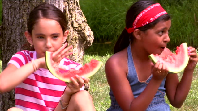 ms two girls eating watermelon side by side against tree trunk / sherman, ct, usa - side by side stock videos & royalty-free footage