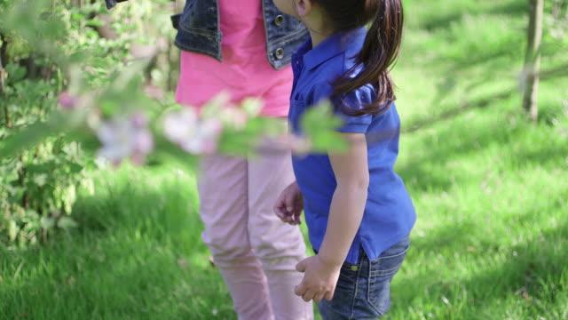 vídeos y material grabado en eventos de stock de two girls holding eggs - cabello recogido