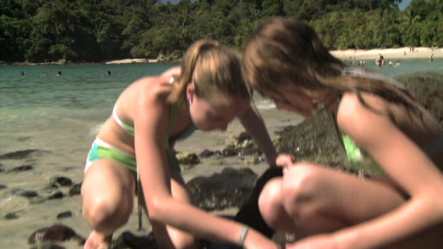 two girls looking for seashells on a beach - andere clips dieser aufnahmen anzeigen 1157 stock-videos und b-roll-filmmaterial