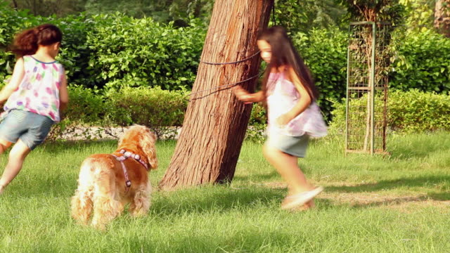 two girls playing in the park, delhi, india - tree trunk stock videos & royalty-free footage