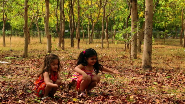 Two Girls Playing With Leaves In The Park Delhi India Stock