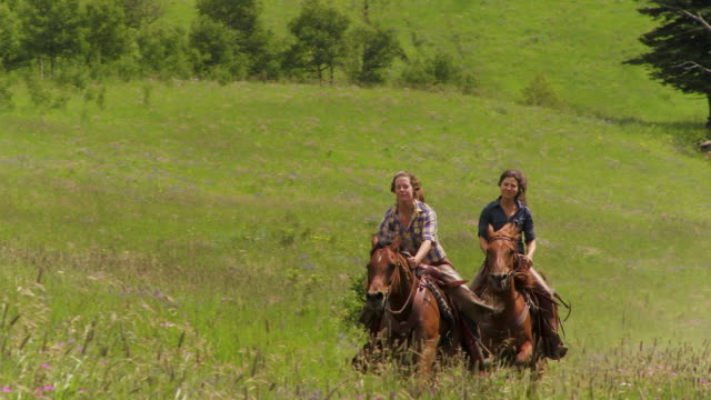 two girls race on horses - women doing farm animals stock videos and b-roll footage