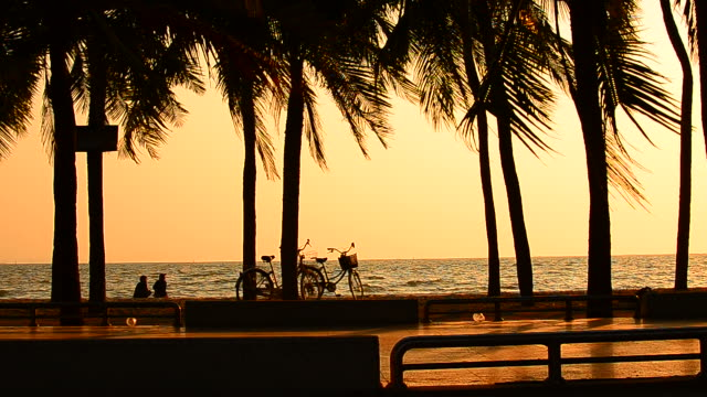 stockvideo's en b-roll-footage met two girls relaxing at sunset palm tree beach with bicycles - hd format
