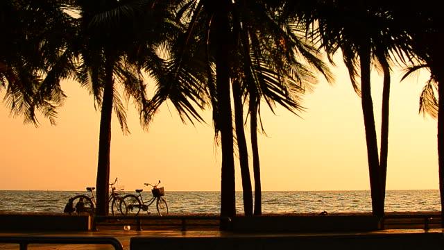 vídeos y material grabado en eventos de stock de dos niñas disfrutar en la puesta de sol en la playa de palmeras con bicicletas - full hd format