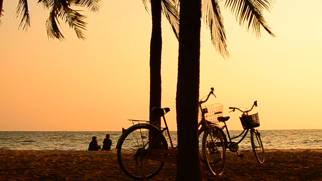 two girls relaxing at sunset palm tree beach with bicycles - coconut palm tree stock videos & royalty-free footage