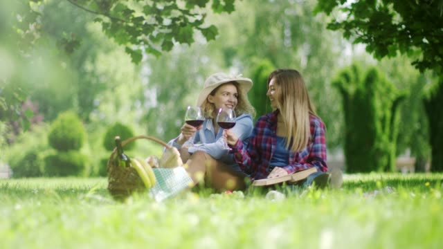 vídeos y material grabado en eventos de stock de dos niñas sentadas y beber vino tinto en la comida campestre en la naturaleza - vino