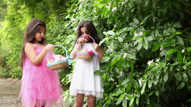 two girls smelling flowers in the garden - korb stock-videos und b-roll-filmmaterial