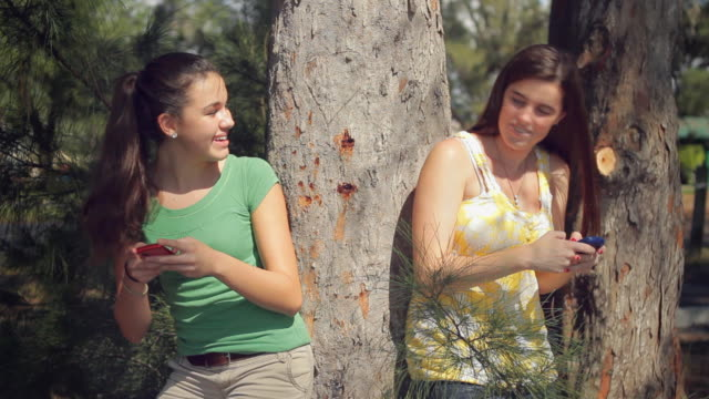 ms two girls (14-15) texting each other by tree / cape coral, florida, usa - cape coral stock videos & royalty-free footage