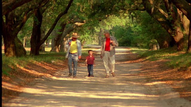 two grandfathers and their grandson walk under trees with fishing poles. - wilmington north carolina stock-videos und b-roll-filmmaterial
