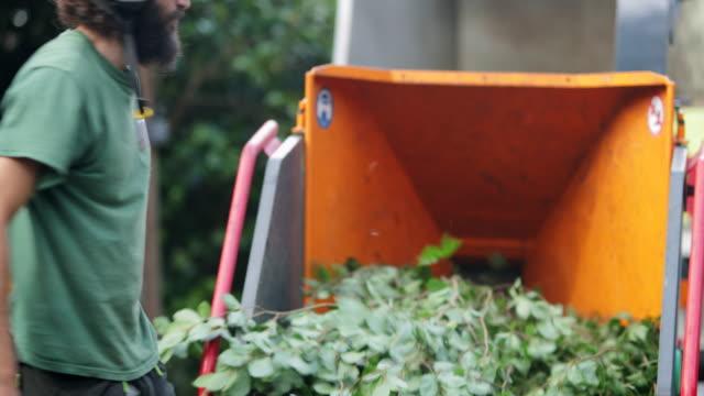 two green hands - lumberjack stock videos & royalty-free footage