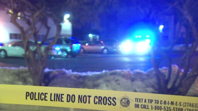 WGN Two gunmen shot a woman at a CTA bus stop during an attempted robbery on February 25 2014 in Chicago Illinois