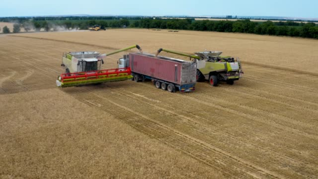 two harvesters fill up the crop in a сrop transport trucks - aerial view - full stock videos & royalty-free footage