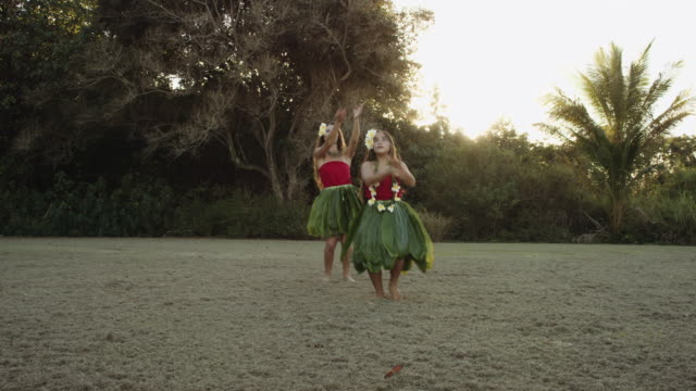 two hawaiian hula dancers performing a synchronized dance - polynesian ethnicity stock videos & royalty-free footage