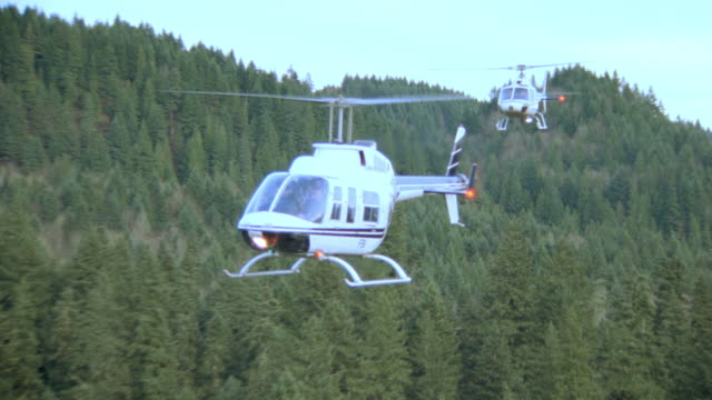 two helicopters fly low over a forest with the co-pilot visible in the cockpit. - fbi stock-videos und b-roll-filmmaterial