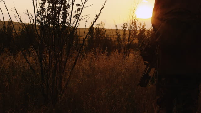 two hunters pass by the camera as they stalk their prey at sunset. - hunting sport stock videos & royalty-free footage