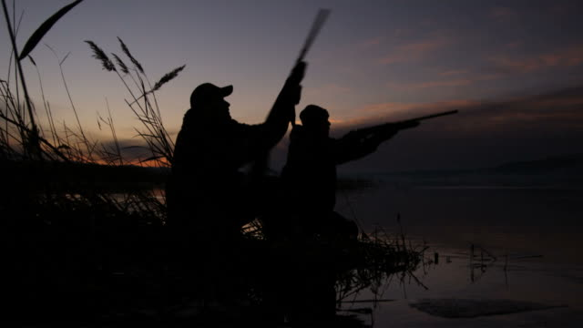 two hunters throwing shooting at the same time - bird hunting stock videos & royalty-free footage