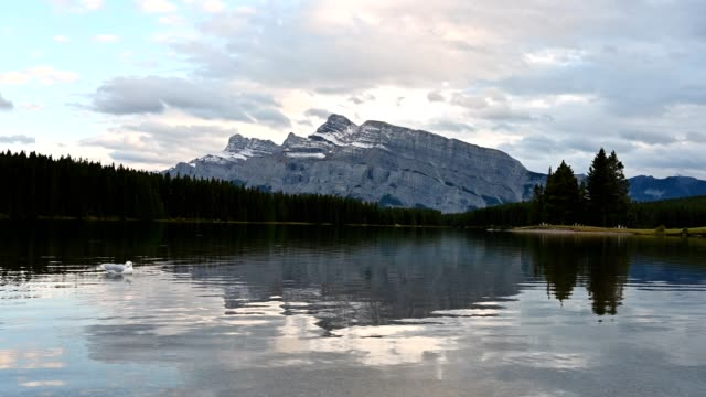 two jack lake with mount rundle reflection in evening at banff national park - interconnect plug stock videos & royalty-free footage