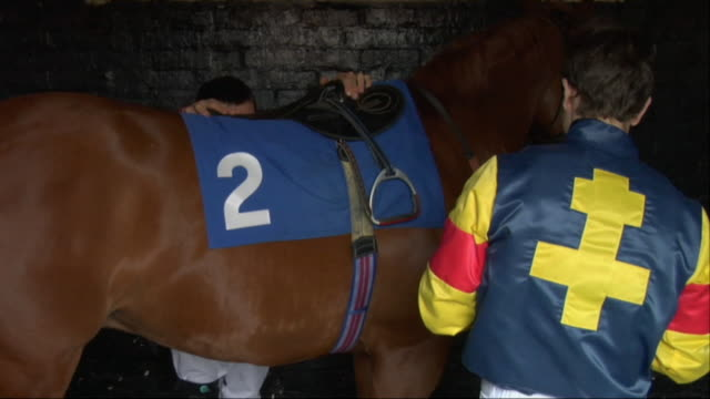 CU ZO MS Two jockeys adjusting saddle on horse in stable / Newbury, England, UK