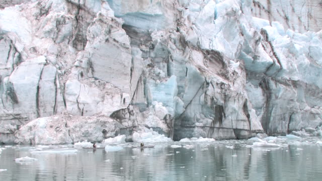 ws, two kayakers paddling along lamplugh glacier, john hopkins inlet, glacier bay national park and preserve, alaska, usa - glacier nationalpark stock-videos und b-roll-filmmaterial