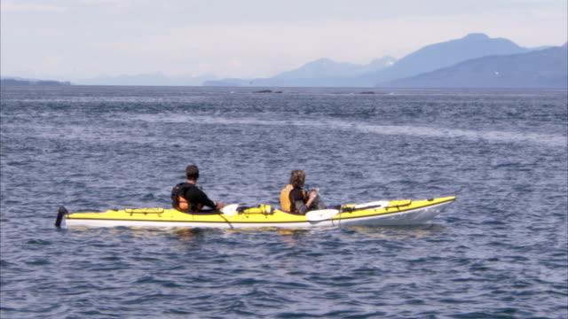 vídeos y material grabado en eventos de stock de two kayakers watch whales breach in the ocean. - cetáceo