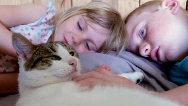 zwei kinder kümmern sich um ihre haustierkatze - streicheln stock-videos und b-roll-filmmaterial
