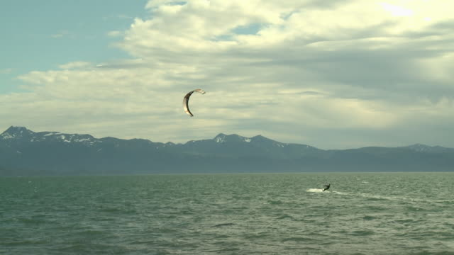 """two kitesurfers/kiteboarders on the water of kachemak bay, shot from the shores of homer, kenai peninsula, alaska, snow capped mountains of kachemak bay state park & wilderness park in background."" - homer alaska stock videos & royalty-free footage"