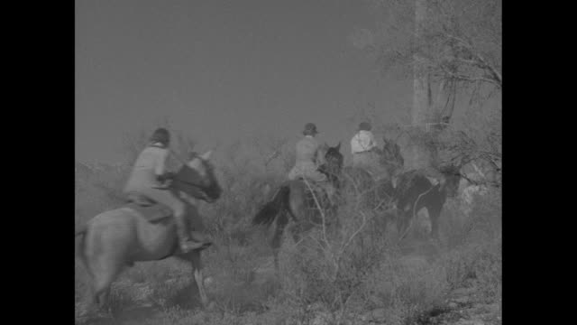 """two lines of female riders, students called """"riders of the cactus,"""" converge at base of tall cactus / horses with women trot up hill / riders and... - barricade stock videos & royalty-free footage"""