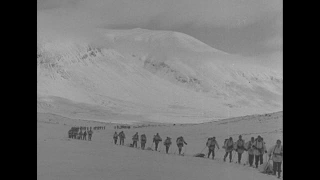 vídeos de stock, filmes e b-roll de two lines of swedish ski brigade soldiers on skis in snow / heavily laden skiers passing camera / line of soldiers extends to snowy horizon / vs with... - ski pole