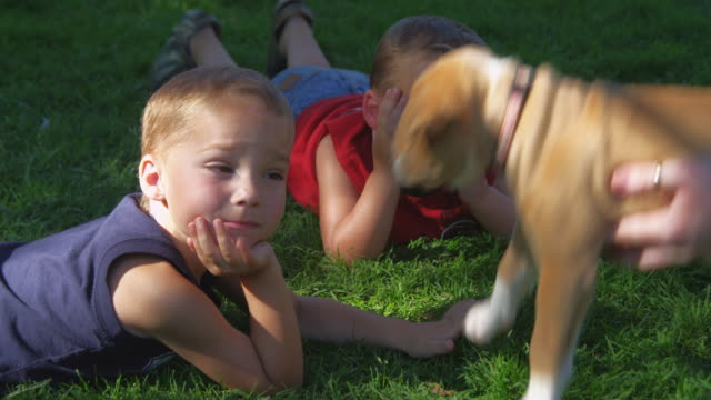 Two little boys lying on green grass are joined by a playful puppy