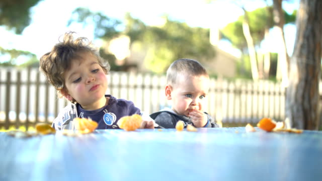 two little brothers peeling and eating tangerines in the garden - tangerine stock videos and b-roll footage