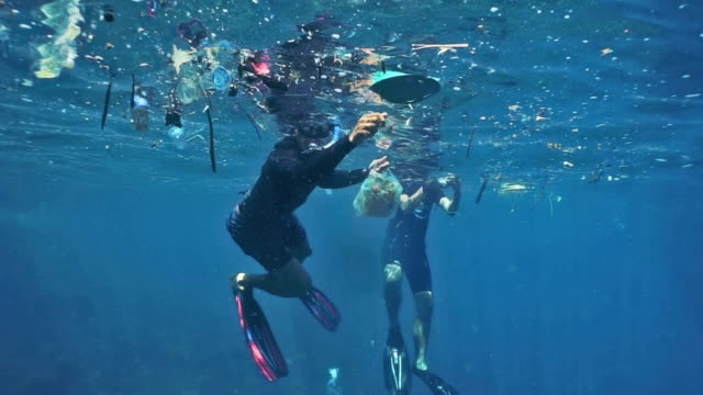two male environmentalists in the ocean removing plastic pollution from garbage patch - environmental conservation stock-videos und b-roll-filmmaterial