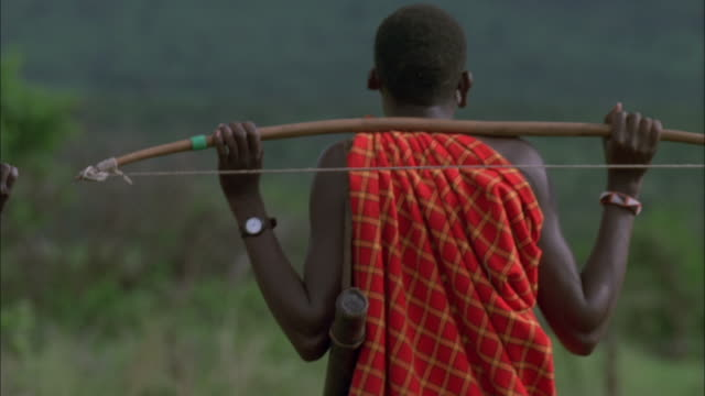 Two Masai hunters walk across the veldt. Available in HD.