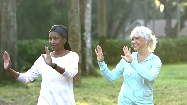 two mature women practicing tai chi in the park - fitness tracker stock videos and b-roll footage