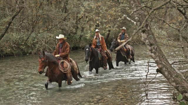 vidéos et rushes de deux hommes et une femme à cheval dans la rivière - medium group of animals