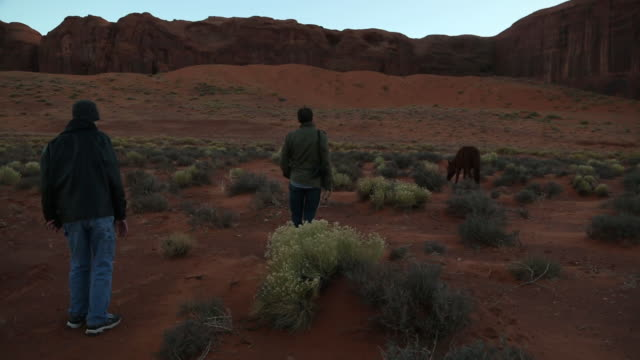 two men carefully approach wild horse in monument valley - two people stock videos & royalty-free footage