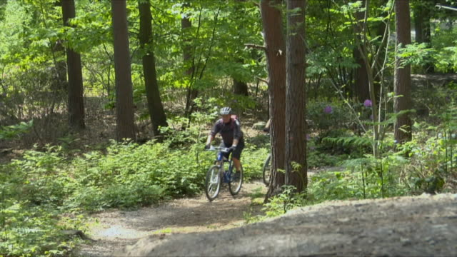 tl ws cu two men cycling on path through woods and walking bikes up hill in bedgebury forest / kent, england, uk - see other clips from this shoot 1036 stock videos and b-roll footage