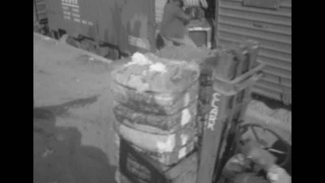 vidéos et rushes de two men driving forklifts loaded with cotton bales alongside train cars / two men drive forklifts into train car / shot from inside train car of man... - fresno