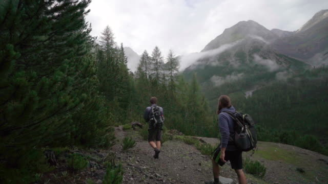 two men hike wooded trail in mountains - hiking stock videos & royalty-free footage
