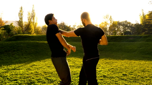 two men in public park practising the martial art of wing chun - military training stock videos & royalty-free footage