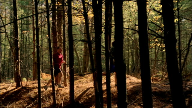 MS, PAN, SLO MO, two men jogging in forest, USA, Pennsylvania
