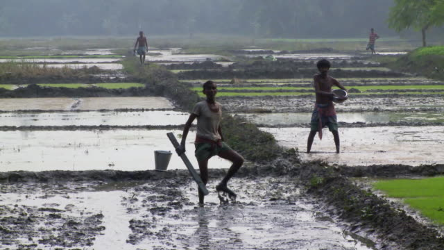 two men preparing rice fields in india - 泥点の映像素材/bロール