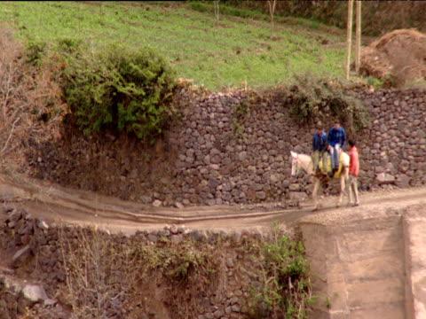 vídeos de stock, filmes e b-roll de two men riding sideways on mule and man walking pass along road with stone wall - peitoril de janela