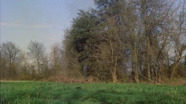 ms two men running across field - fuggire video stock e b–roll