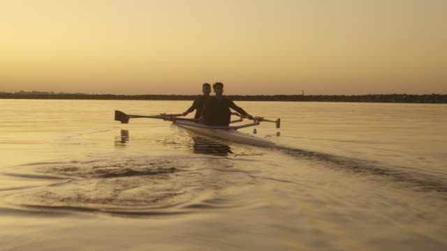 two men sculling on lake in early morning. - sculling stock videos & royalty-free footage
